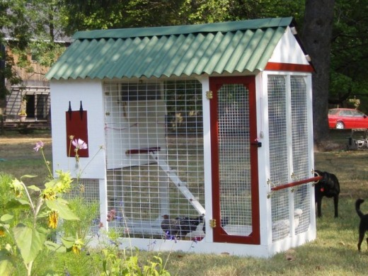 This coop is very similar to the one we had built