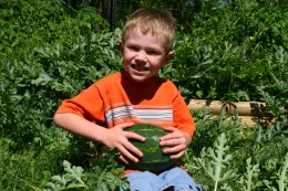 My five year old son with an immature Orange Tendersweet watermelon.