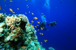 Blue Hole and Canyon in the Red Sea, Egypt