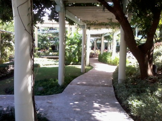 Pathway to the beach view rooms