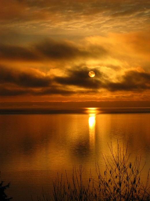 Dark Sun from jane1874 Source: flickr.com