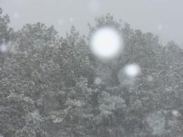 The beauty of snowfall.