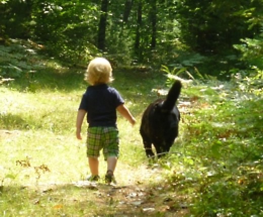 a boy and his dog - (www.simplelivingfamily.com)