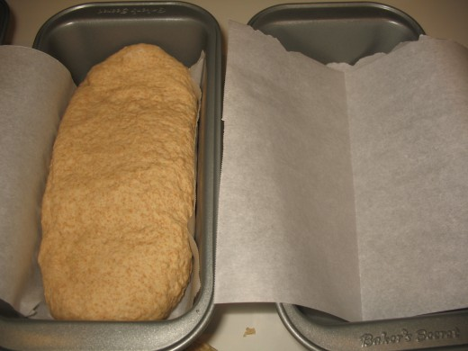 Placing dough in the pans to rise