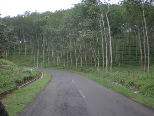 The winding road leads to Pelabuhan Ratu