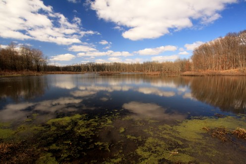 Spring Sky Reflected in Water, Black Fork Bottoms Hunting Preserve, Ashland County, Ohio