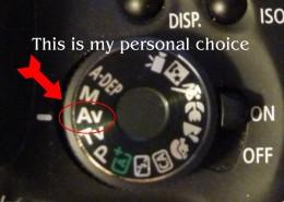 My personal favorite is Av, or Aperture Priority.