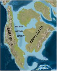 The Western Interior Seaway