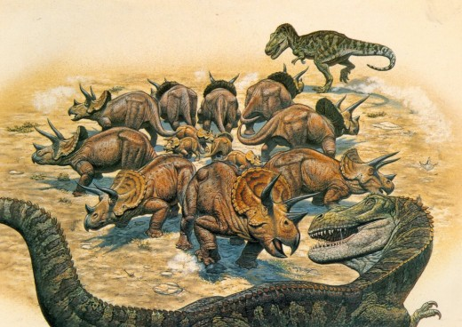 Triceratops forming a defensive ring around their young