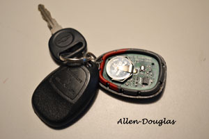 Typical GM Keyless Entry Remote