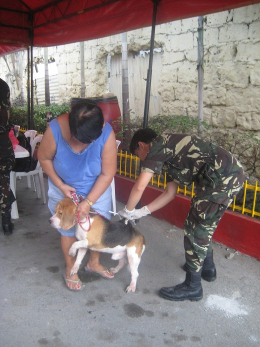 PNP Maritime Group personnel vaccinating a dog