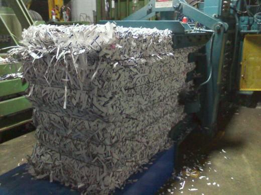 Our shredder, saving a extra tree
