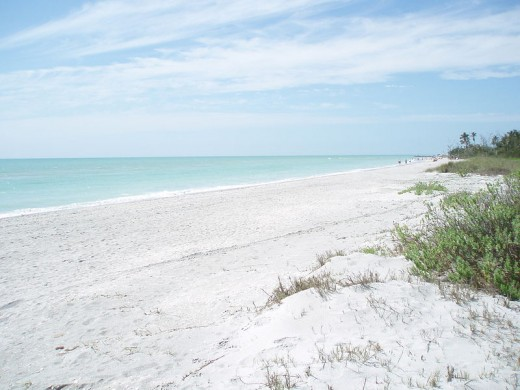 "One of the beautiful beaches for ""shelling"" on Sanibel Island in Florida."