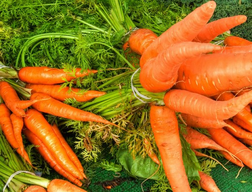 Fresh carrots for weight loss