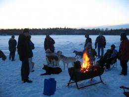 Dog Howl Bonfire