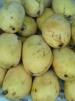 Sweet Mangoes (All photos by Travel Man)
