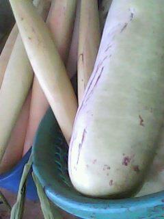 White Squash and Banana Heart