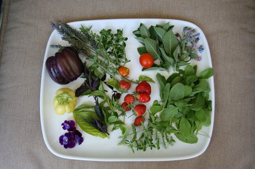 Edible flowers and plants