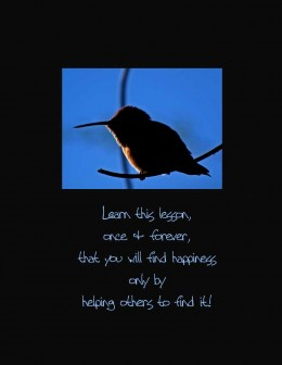 Quote by Napoleon Hill. Photo of Hummingbird, resting at dusk.