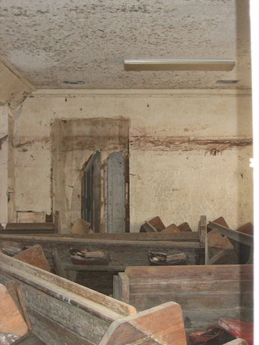 Remove mold and mildew to restore a healthy environment.