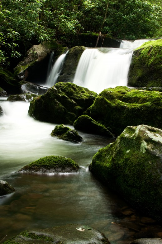 Unnamed Waterfall, Great Smoky Mountains National Park, Tennessee