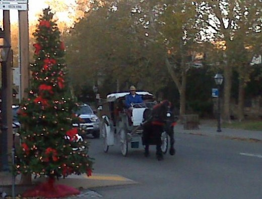 "Horses and carriages are nice but only employ 1 person, and a horse. Sacramento must start to ""THINK BIG"" and create new streams of revenue."