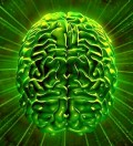 Vitamin Supplements to Increase Memory and the Power of Concentration