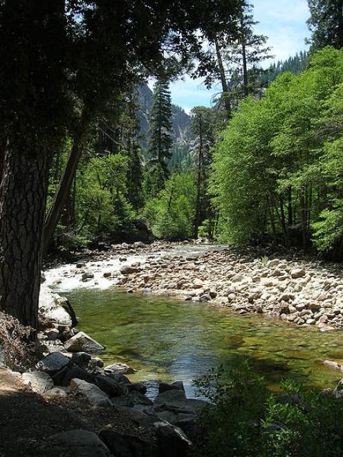 Beautiful Merced River in Yosemite