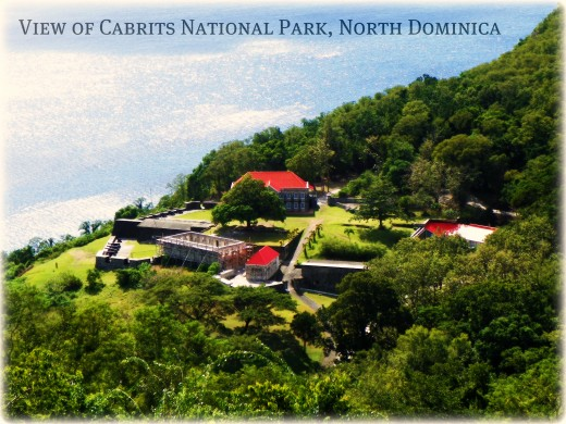 Fort Shirley in Cabrits National Park