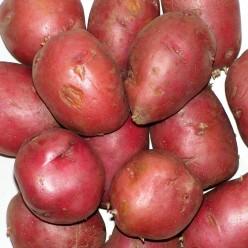Refskin Potatoes