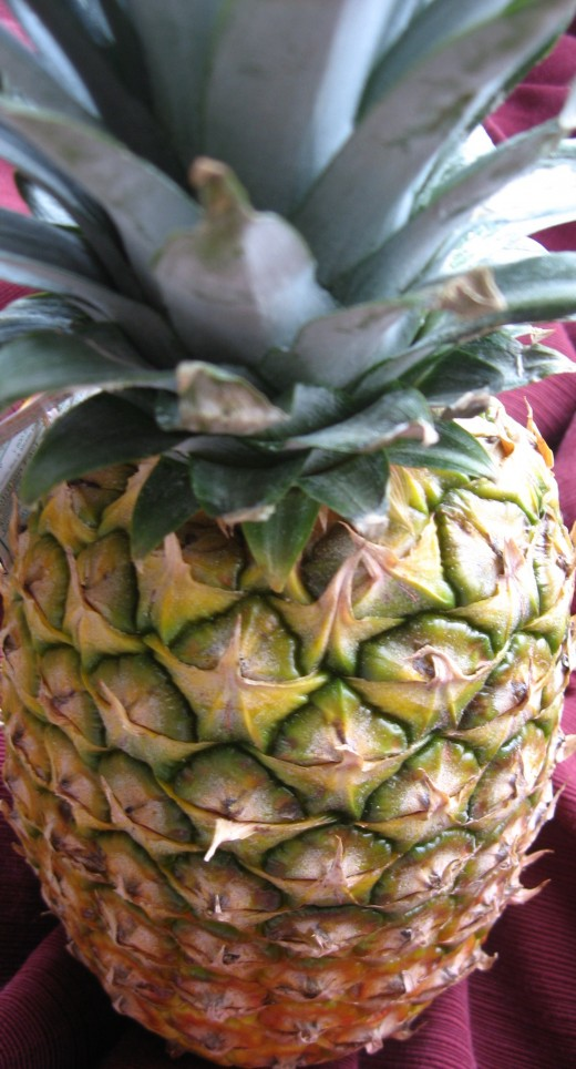 A ready ripe Hawaiian Pineapple.