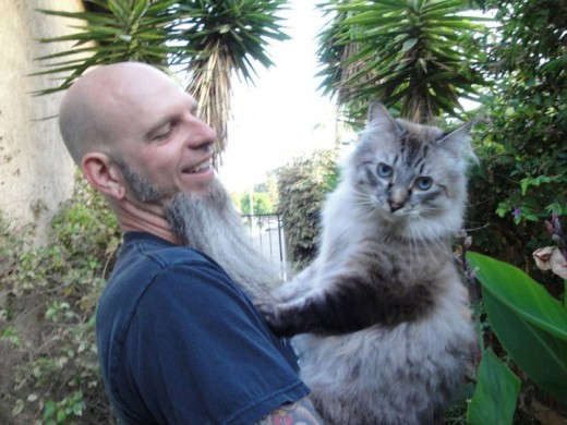 This is Brian with one of our cats, Sampson. Sampson is a doll!! This cat loves to give head butts and is very affectionate. If a guy is this great with cats, just think of what kind of dad he'll be!!