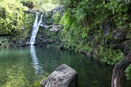 Hidden Waterfall on the Road to Hana