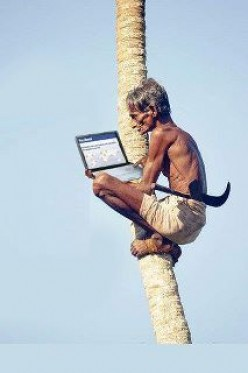 Can you climb a coconut tree with your laptop? If so, what are your tricks to do it?