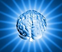 Man's Cognitive Abilities