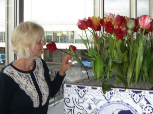 Amsterdam Airport Schiphol - smelling a tulip