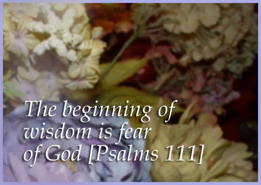The beginning of wisdom is the fear of Hashem. Psalms 111  We say that 'fear' means 'awe'