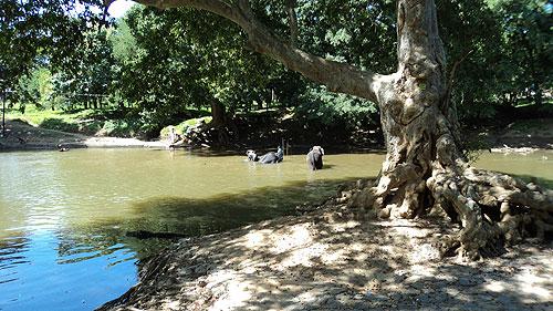 River Menik (Menik Ganga).
