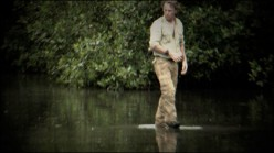 Emmet Cole Walks on Water