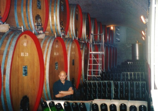 Large barrels of Slovenian Oak