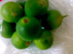 Calamansi Juice: Health Benefits, Diet And How To Grow Its Tree