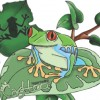 Etter2001 profile image