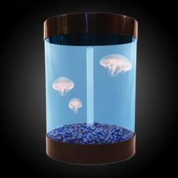 Desktop jellyfish aquarium.