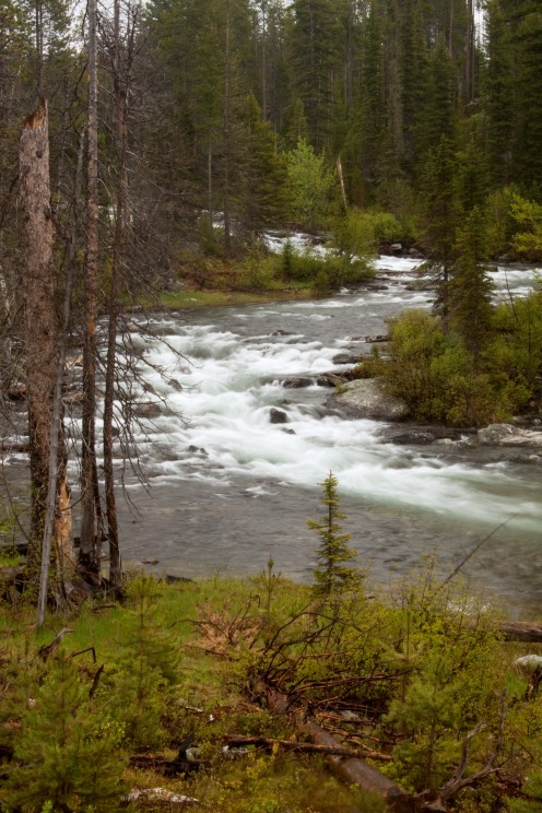 A River Runs Through It, Grand Teton National Park, Wyoming