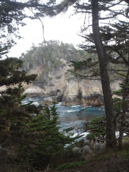 Point Lobos State Preserve outside of Monterey.
