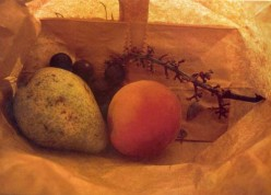 How does fruit ripen in a brown paper bag?
