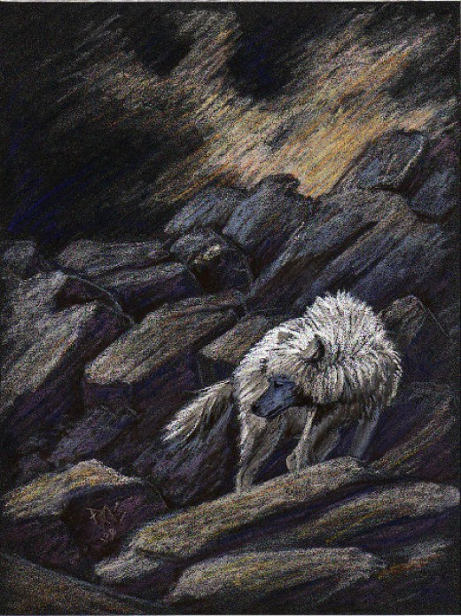"""A White Wolf"" - pastel on PastelMat by Robert A. Sloan"