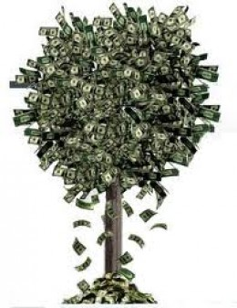 Once you start you will think money grows on trees!!!!