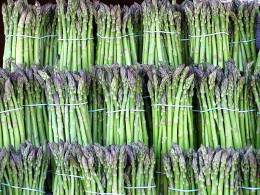 Asparagus For Sale. You'll find asparagus offered for sale fresh, frozen and canned. Or you can do a little research and grow your own.