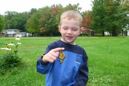 When my son was sad about a dead butterfly, we raised several caterpillars to adulthood and released them. This gave my son the feeling that he could do something positive after a sad event.